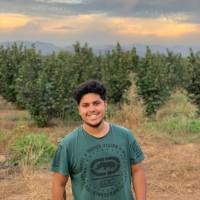 felipeCastillo, autor del poema'Paradoja: El joven sabio''