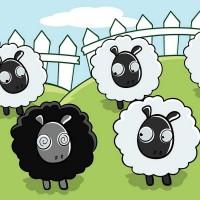 oveja poetica, autor del poema'Entrañas''