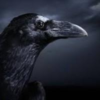 Raven, autor del poema'Engaño perecedero''