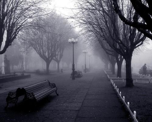 """Expresa tu momento """" in situ """" con una imagen Poema-70806-hoy-es-un-dia-gris"""